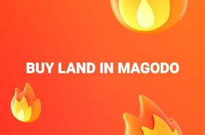 Buy land in magodo