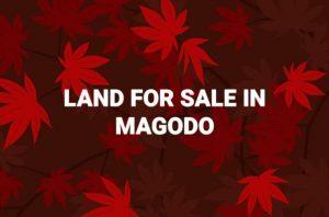Land for sale in magodo